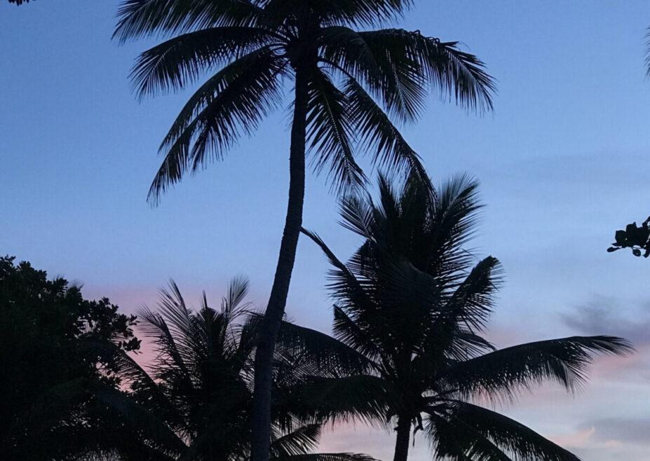 5 destinations tendances voyage de noces 221 - blog mariage - le carnet blanc